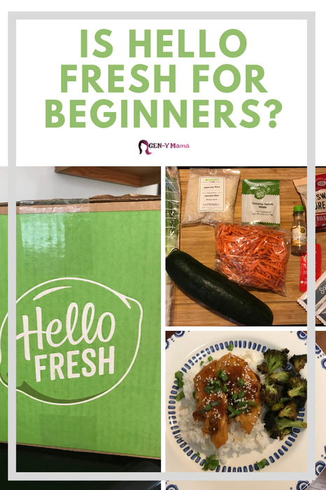 Is Hello Fresh for Beginners?
