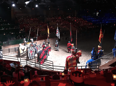 Medieval Times Knights and Horses